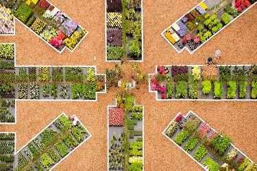 a-luchtfoto-vaste-planten